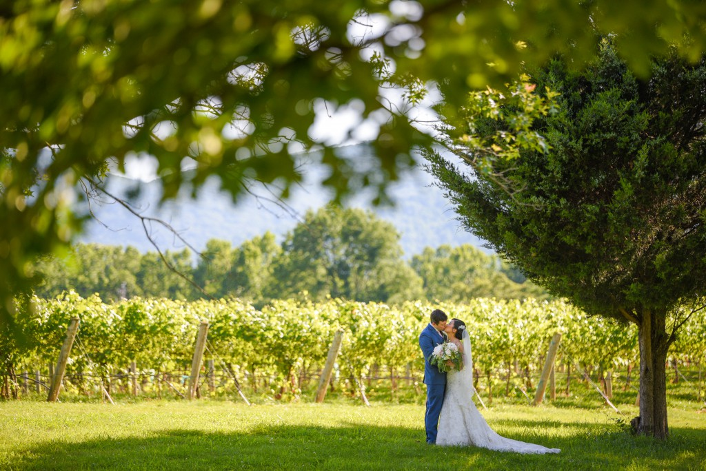 Charlottesville Summer Wedding